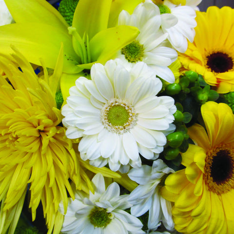 White & Yellow Wrapped Flower Assortment