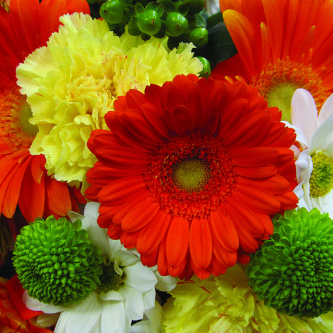 Orange, Lime & Yellow Wrapped Flower Assortment