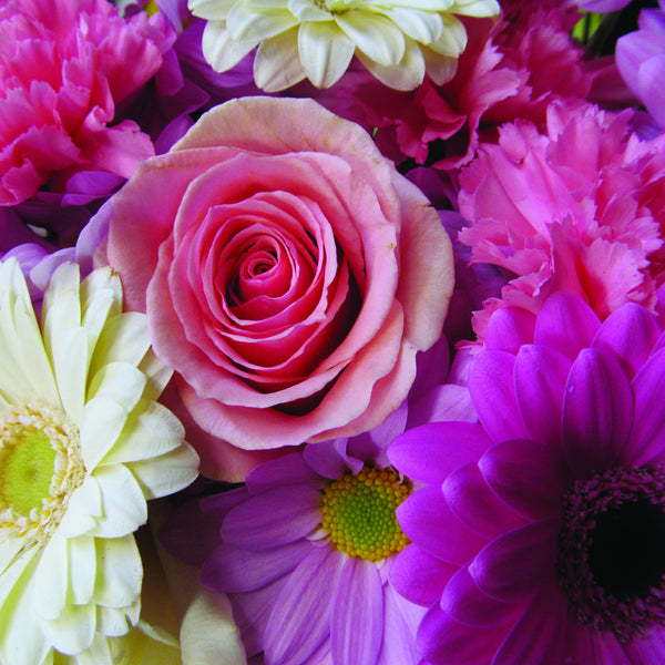Pink Wrapped Flower Assortment ($35, 50 or 75 - choose size)