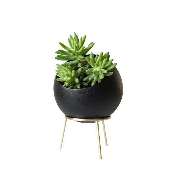 Kitbox Globe Midi Planter - Thirty Six Knots - thirtysixknots.com