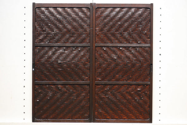 Antique Door E8823