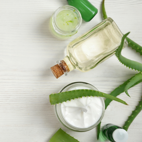 Benefits and Uses of Aloe Vear