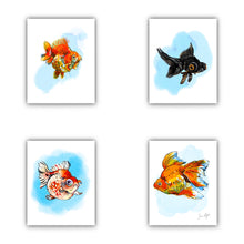Load image into Gallery viewer, Fancy Goldfish print pack