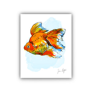 Fancy Goldfish IV