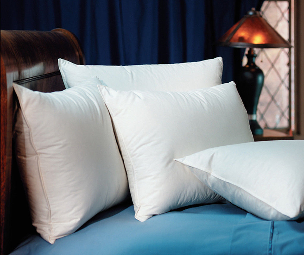 2 Pacific Coast Wyndham Touch of Down Standard Pillows
