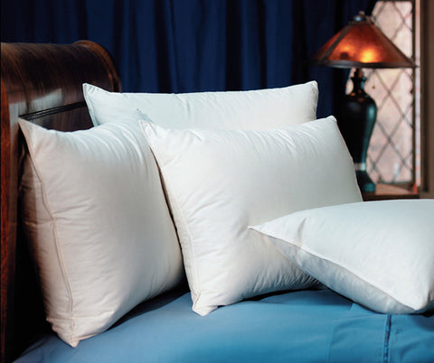 2 Pacific Coast Double Down Surround King Pillows Found at Ritz-Carlton Hotels