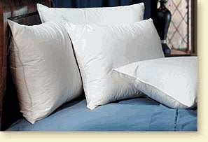 Pacific Coast Touch of Down Standard Pillow Set (4 Standard Pillows)