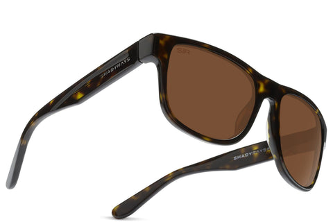 Ventura LIMITED - Lime Light Polarized