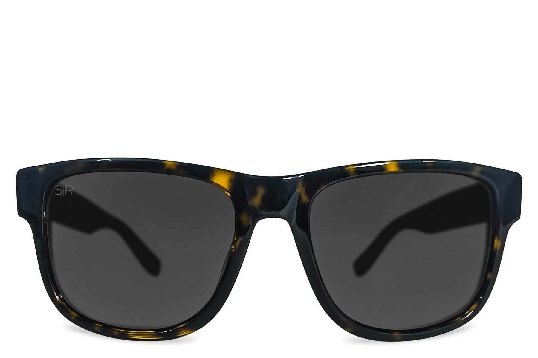 Ventura LIMITED - Black Tortoise Polarized