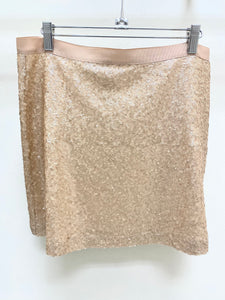 Time to Shine Skirt