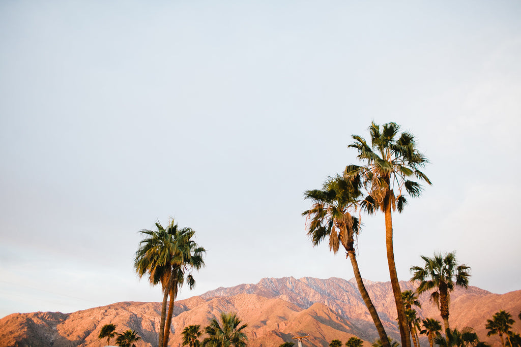 Win a Palm Springs Getaway!