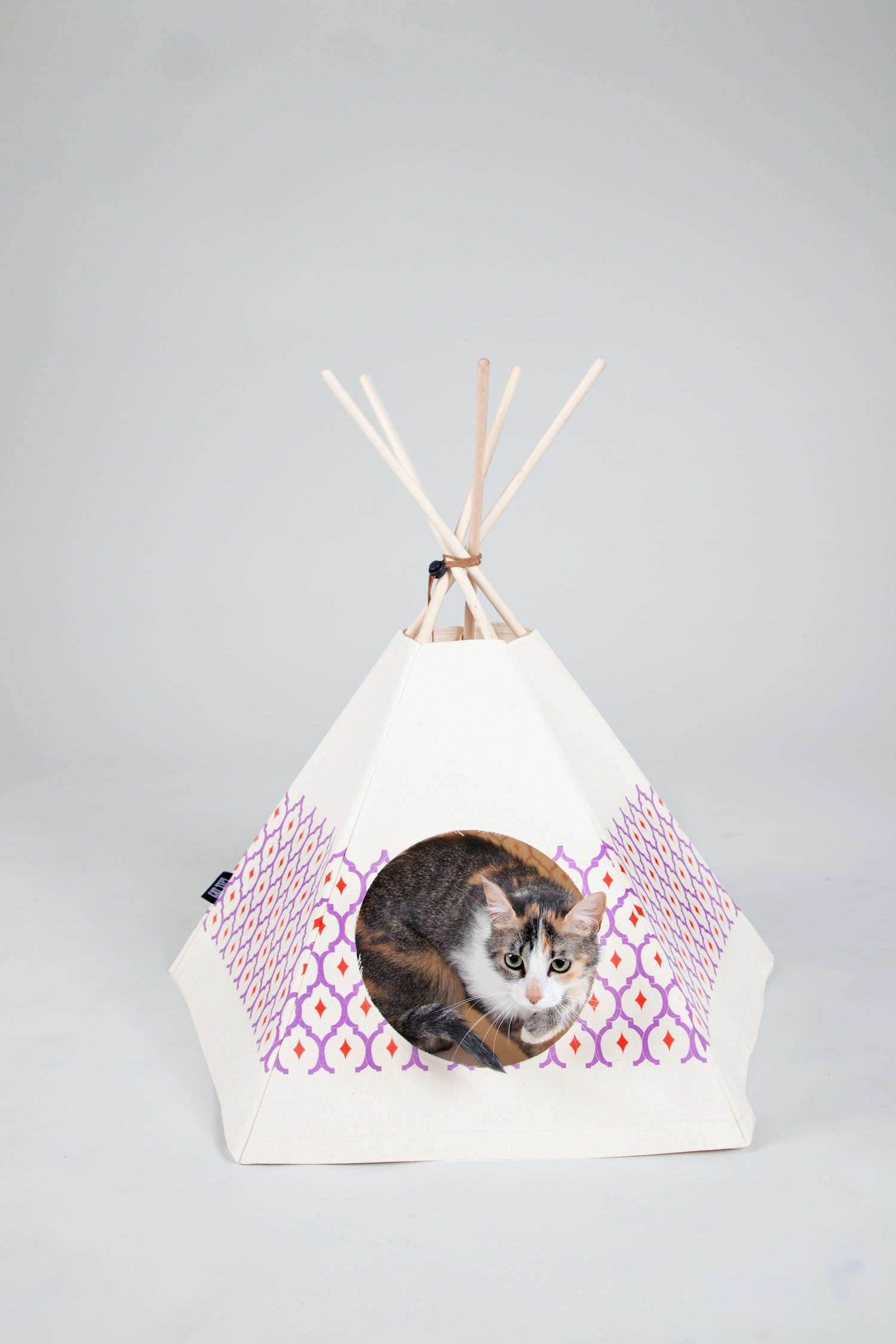 Princess Tipi