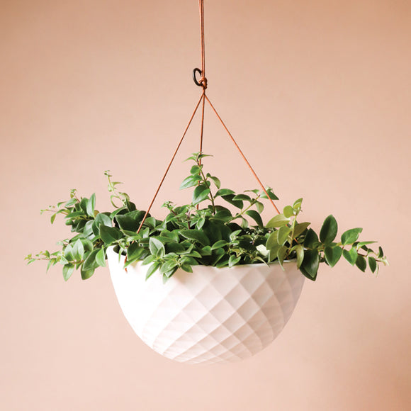 White Hanging Planter