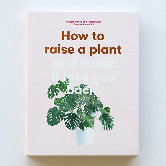 How To Raise A Plant - Pigment