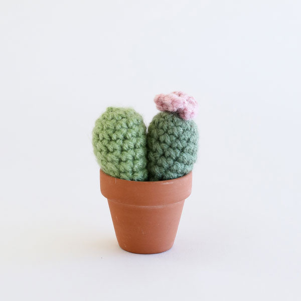 Crochet BB Cactus - Fern & Forest Green