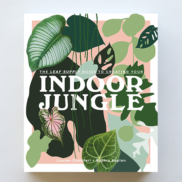 Indoor Jungle - Pigment