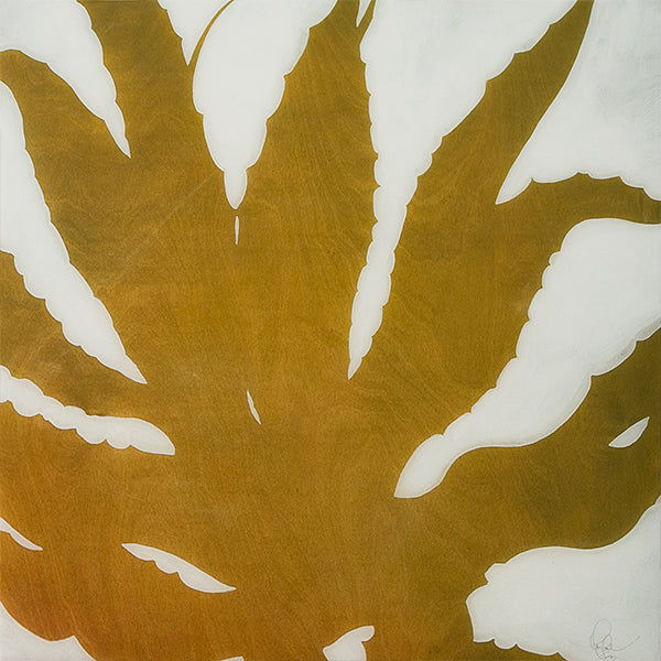 Amy Paul - Aloe - Pigment