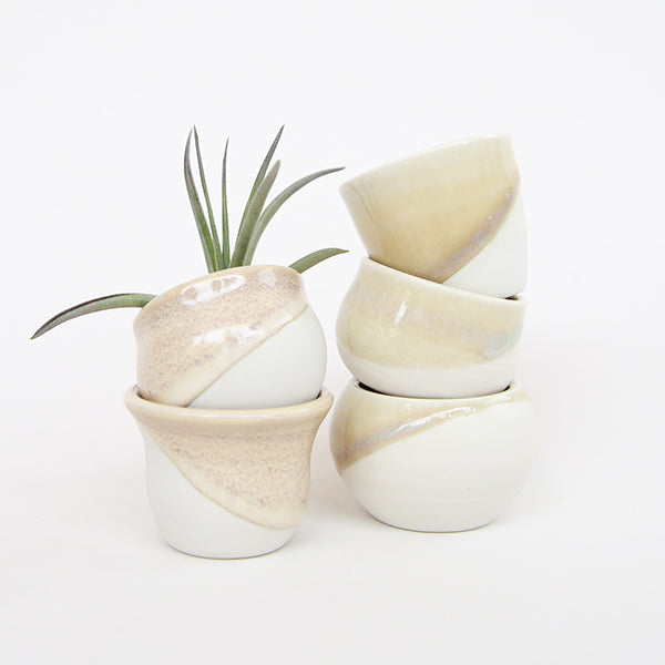 Web - Tiny Pots -White with Tan - Pigment