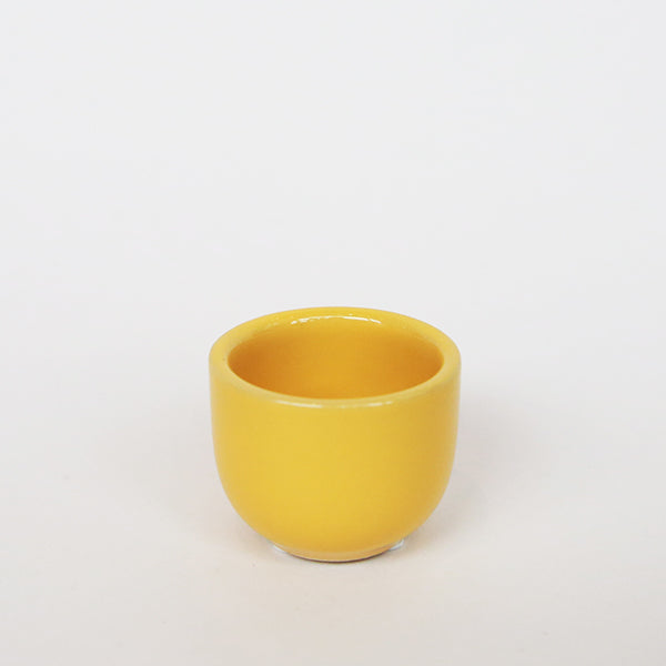 Succulent Cup - Yellow - Pigment