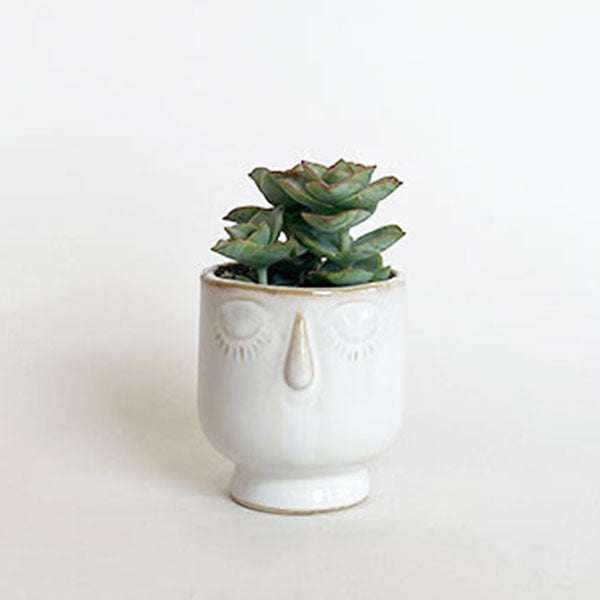 Celia Fancy White Ceramic Pot