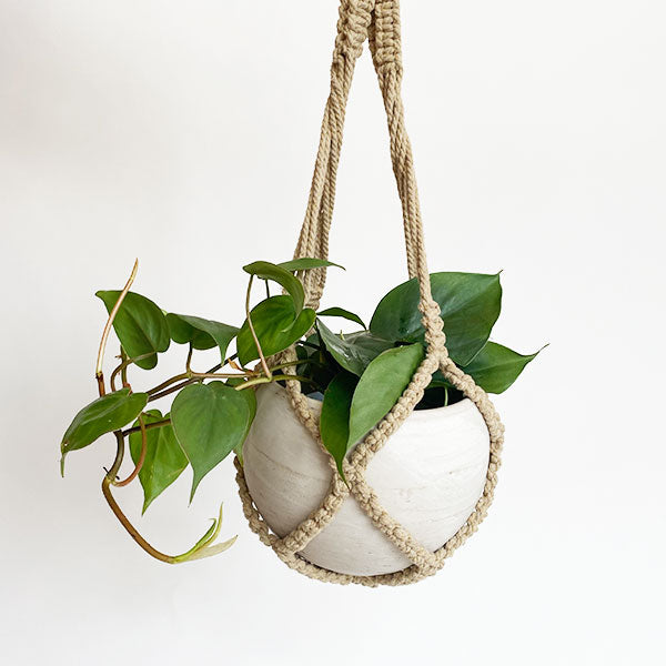 Earth Macrame Plant Holder - 24 inches
