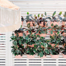 Living Wall Planters - Rose - Pigment