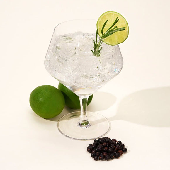 Raye Gin & Tonic Glasses