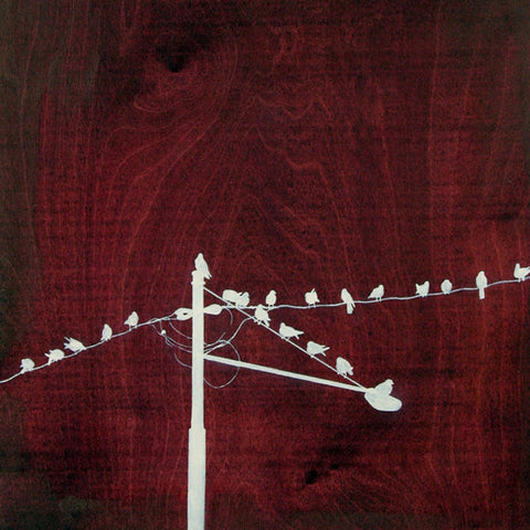 Amy Paul - The Red Gathering - Pigment