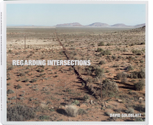 Load image into Gallery viewer, 'Regarding Intersections' (2014) David Goldblatt