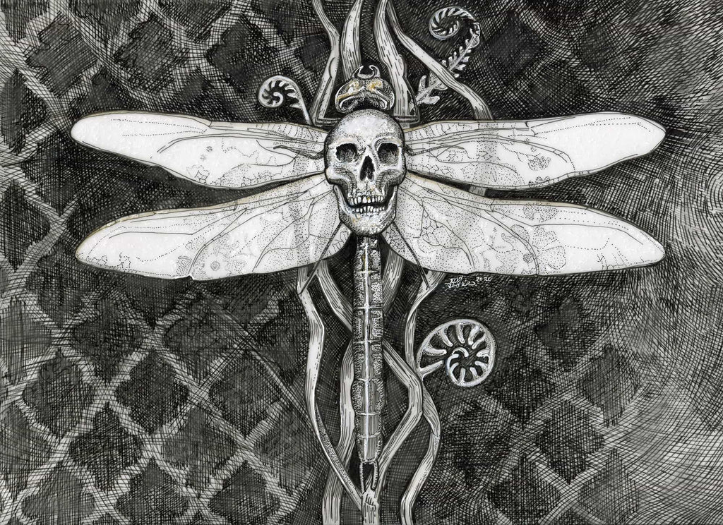 Dragonfly with Skull print - Julie Peterson Shea