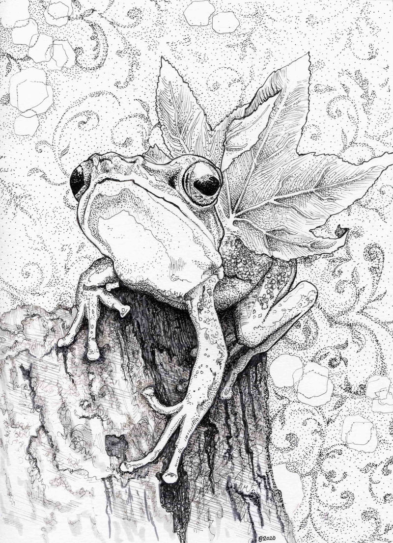 Old Friend, Winged Frog - Julie Peterson Shea