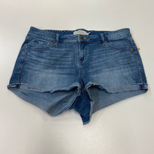 Load image into Gallery viewer, Torrid Shorts // Size 15/16