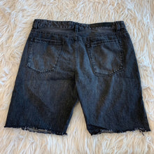 Load image into Gallery viewer, Elwood Men's Shorts // Size 34