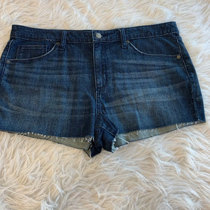 Universal Threads Shorts // Size 16 (33)
