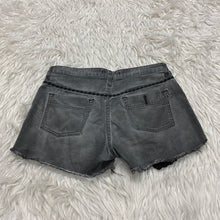 Load image into Gallery viewer, Free People Shorts // Size 2