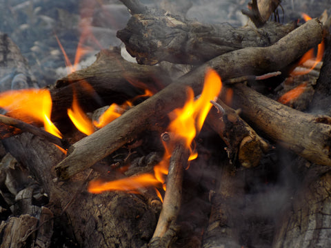 Survival - Fire Burning - Wilderness Survival Systems: Picture