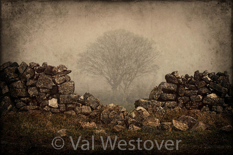 Wall Art - Horses, hounds and Landscapes in Ireland