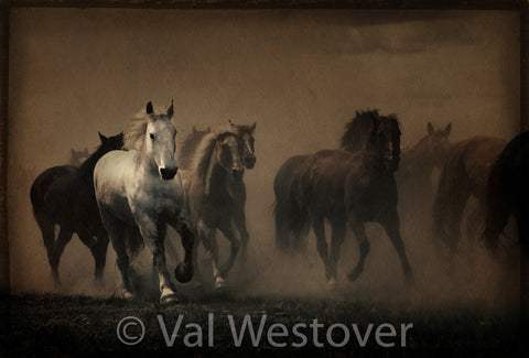 Wall Art - Galloping Horses
