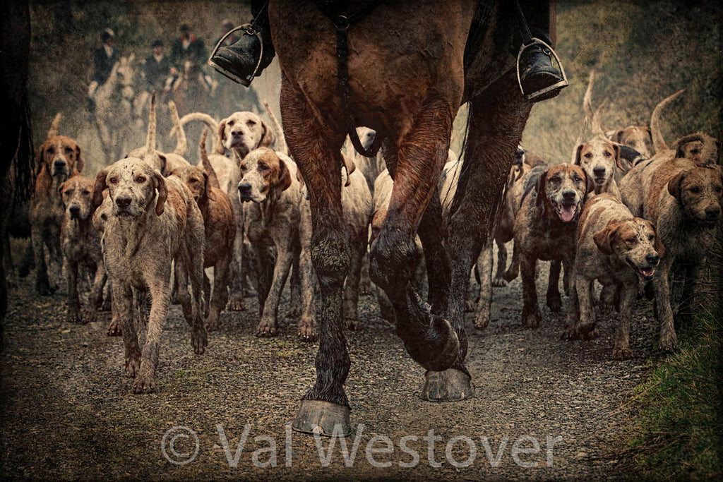 Wall Art - Horses and hounds in ireland – Val Westover Photography Store