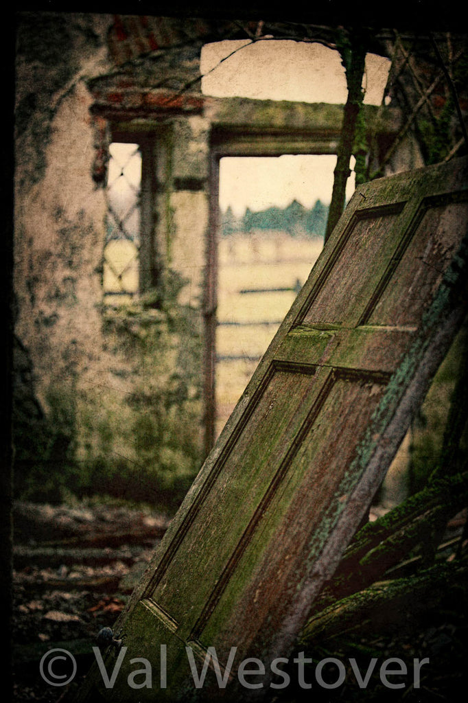 Wall Art - The ruins of a door in an abandoned Irish home
