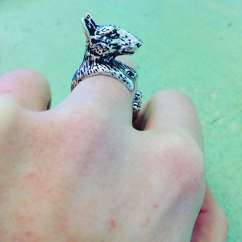 English Bull Terrier Ring