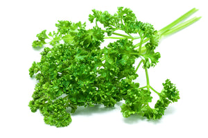 Herb Curly Parsley