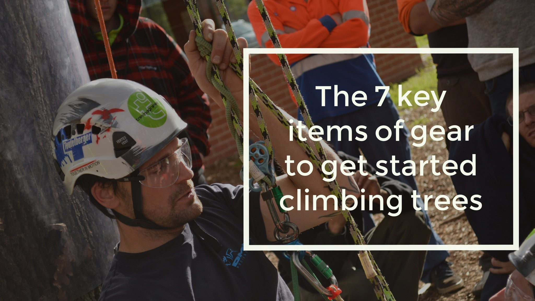 New to Tree Climbing? Here's the 7 key items of gear you need to get