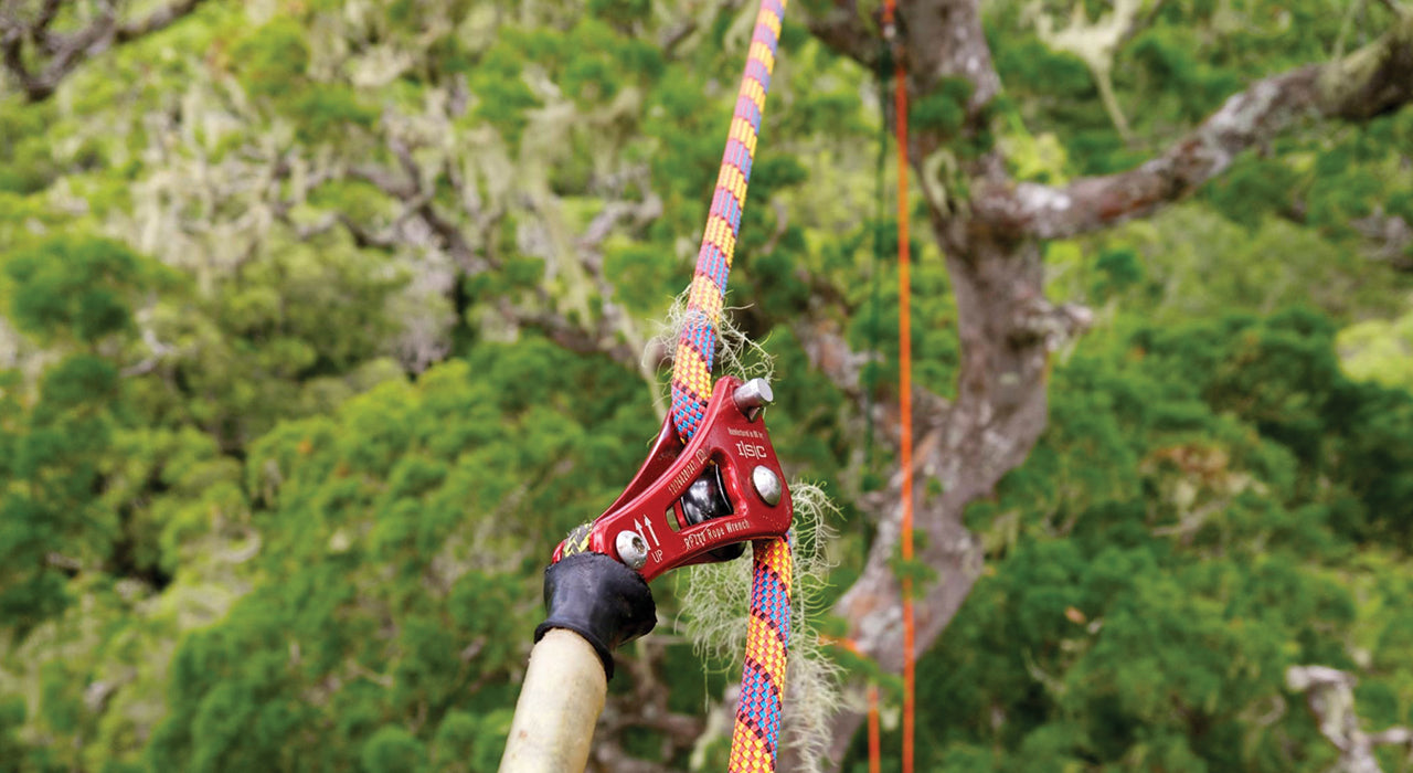Tree Climbing Gear | Height Access | Arborist Equipment | Treegear