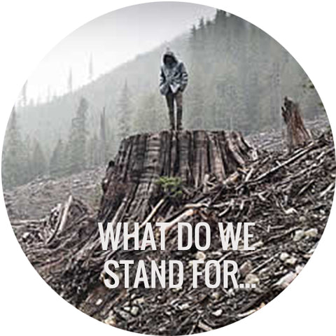 What do we stand for