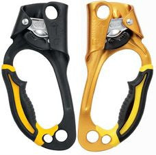 Petzl Ascension Ascender - Treegear Australia