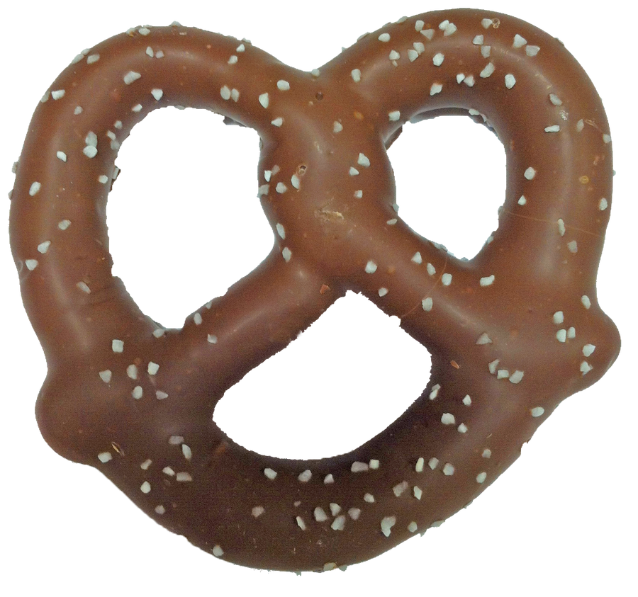 Large Sea Salt Pretzel