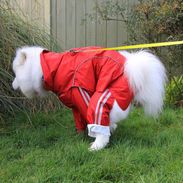 "Dog Pants ""Track Suit"" With Reflective Stripes"