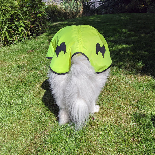 dog rain jacket with decals