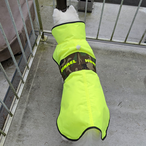 """Squirrel Hunter"" Dog Rain Jacket"